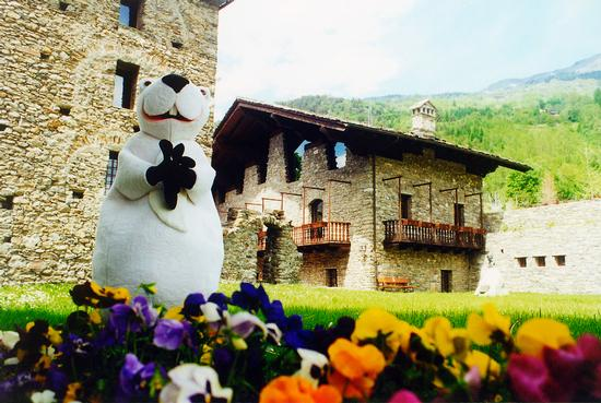 Marmotta bianca e viole, mascotte di  - La salle (3235 clic)