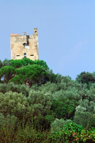 Torre a Punta Ala, Toscana 1998 (1509 clic)
