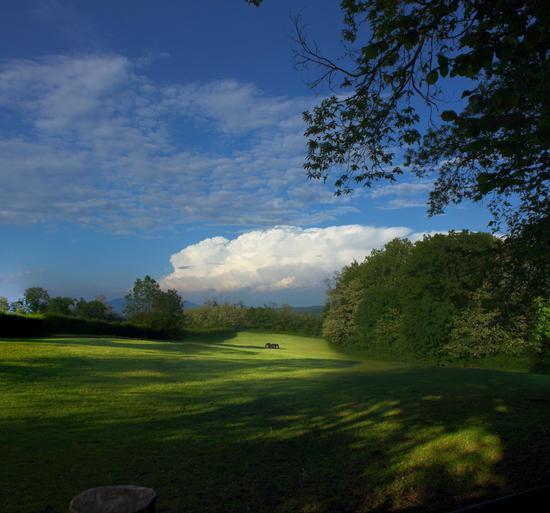 Parco naturale dei Lagoni di Mercurago, Dormelletto, maggio 2011 (2722 clic)