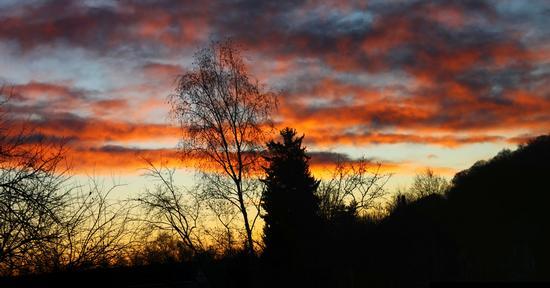 Alba ad Arona, Piemonte dicembre 2011 (1807 clic)