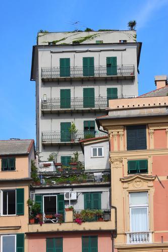 Genova agosto 2010 (1567 clic)