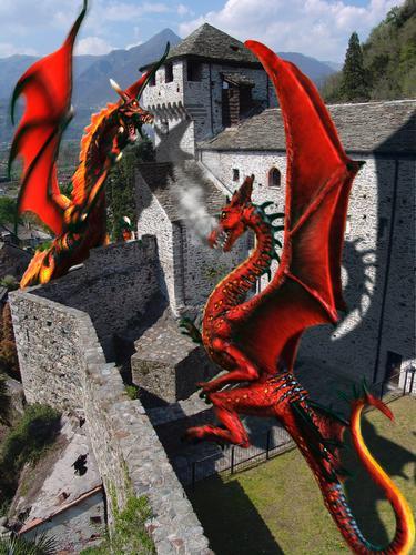 Draghi al castello di Vogogna, Piemonte  (4075 clic)
