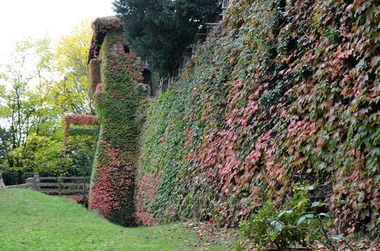 Il castello - Caldarola (397 clic)