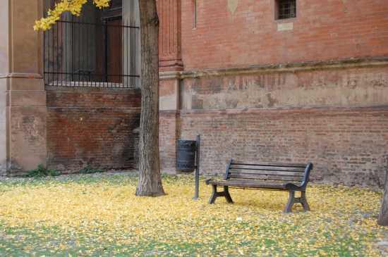 vicino a san domenico - Bologna (2618 clic)