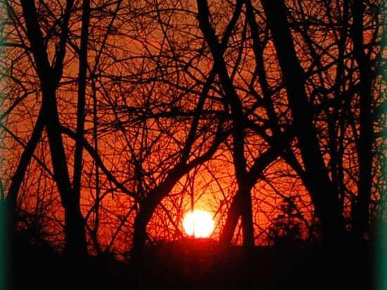 tramonto - Pavia (2364 clic)