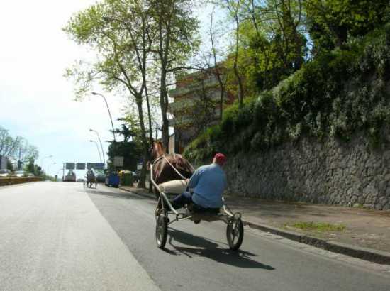 vicino agnano - Napoli (2166 clic)