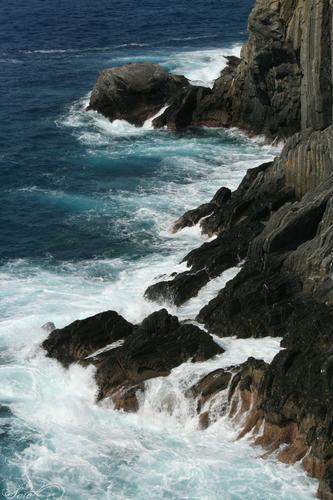 Vista della scogliera all'ingresso della Via dell'Amore - Riomaggiore (3085 clic)