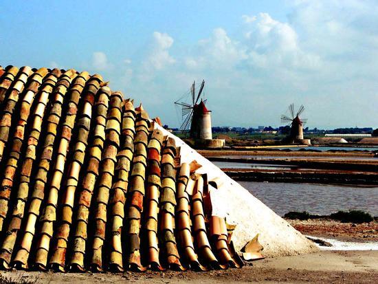 Le saline e i mulini a vento - Mozia (4323 clic)