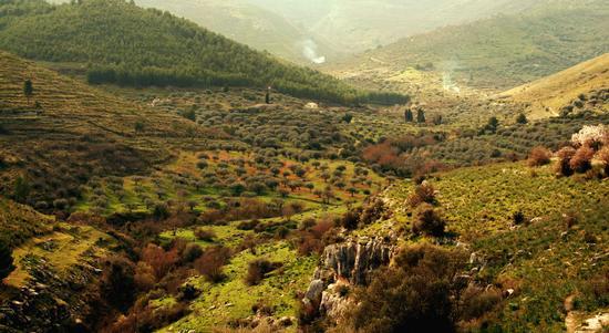 le vallate dei Monti Iblei - Buccheri (8561 clic)