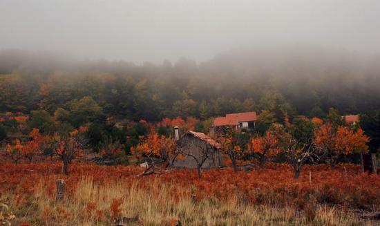 paesaggi autunnali etna sud-ovest - Adrano (3888 clic)