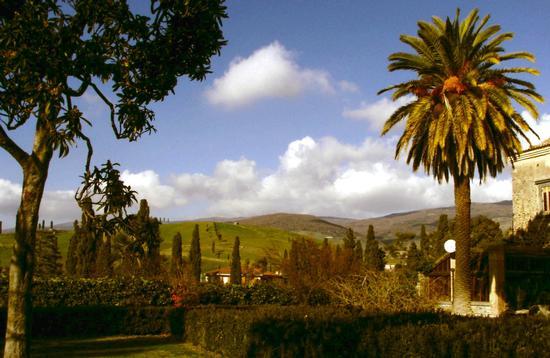 paesaggio collinare alle pendici di Etna ovest - Bronte (3393 clic)
