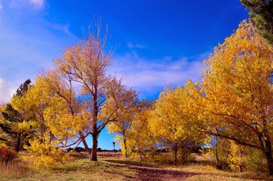 autunno ai piedi dell'Etna - Nicolosi (425 clic)