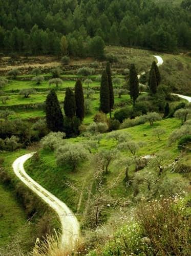 panorama iblei settentrionali - Buccheri (4010 clic)