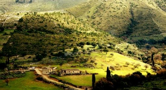 panorama iblei settentrionali - Buccheri (5952 clic)