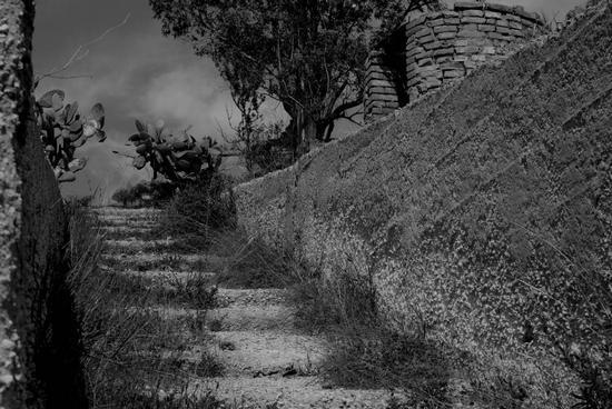 Scalinata al Pozzo - Sommatino (3065 clic)