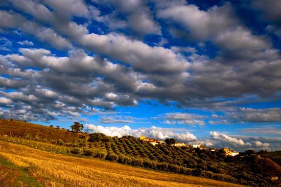 Cielo a pecorelle  - Caltanissetta (6164 clic)