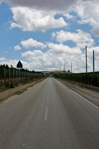 Provinciale - Caltanissetta (2701 clic)