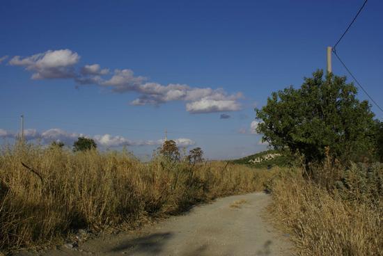 sterrato - Milena (2999 clic)
