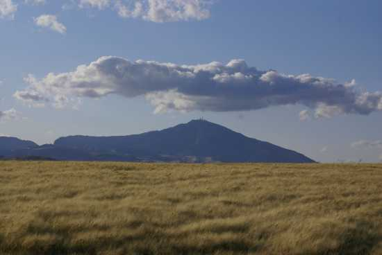 Monte Cammarata (4621 clic)
