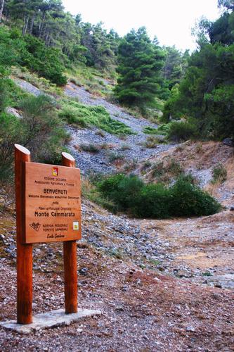 Monte Cammarata (3714 clic)