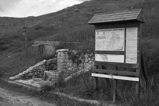 Parco Monte Conca - Campofranco (3002 clic)