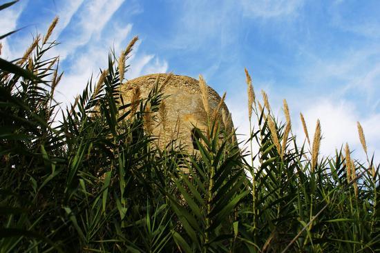 Torre di Gaffe - Licata (3723 clic)