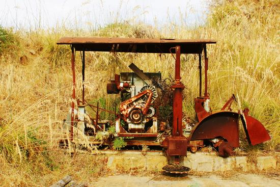 Antico Motore - Muxarello (3307 clic)