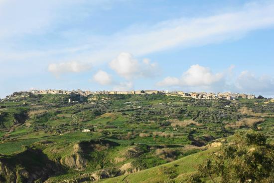 Paesaggio  - Niscemi (3353 clic)
