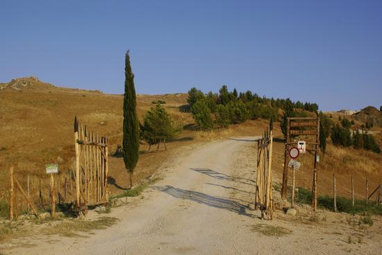Sentiero Palladio - Riesi (2702 clic)
