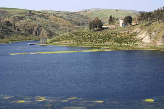 Lago consorziale - Sommatino (3194 clic)