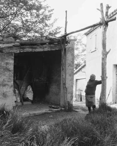 Abitazione rurale - Fossombrone (2824 clic)