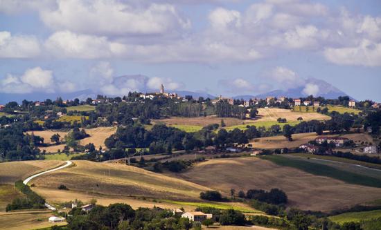 Fratterosa, sullo sfondo il Catria e l'Acuto - Fratte rosa (2340 clic)