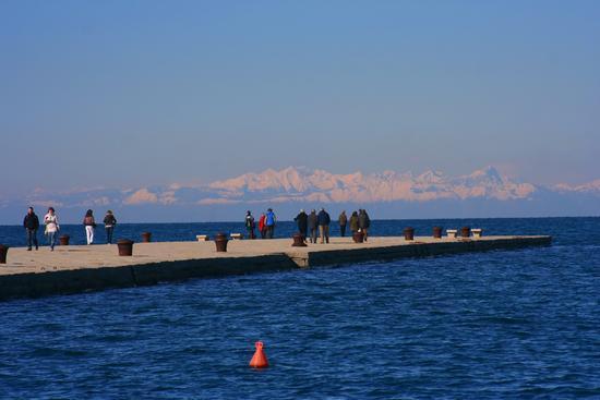 Trieste ..... dal mare ai monti (3523 clic)