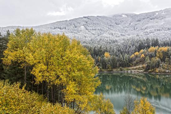 Incontro autunno-inverno sulle rive del lago - Valdaora (953 clic)