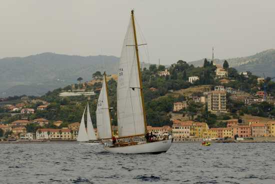 Regata Velica 2008 a Porto Maurizio - Imperia (2573 clic)