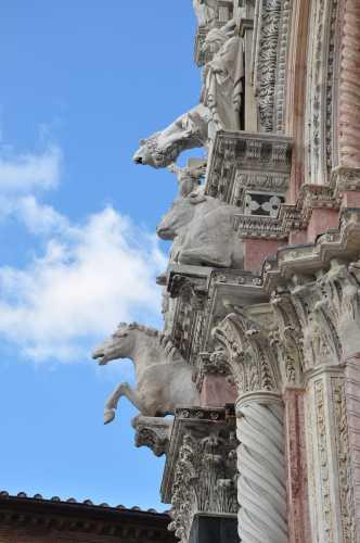 Duomo - Siena (1312 clic)