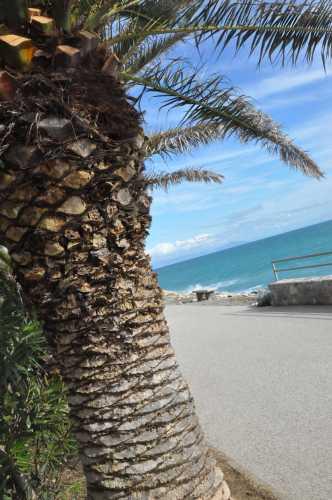 apettando l'estate - Varazze (2201 clic)