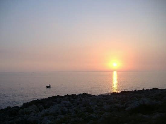 Ai piedi di Torre Uluzzo - Nardò (4462 clic)