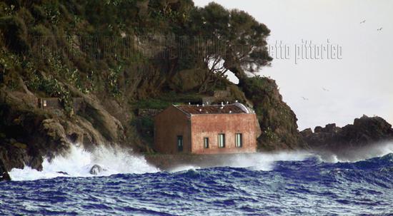 ISOLA LACHEA (ACITREZZA) - Aci trezza (2089 clic)