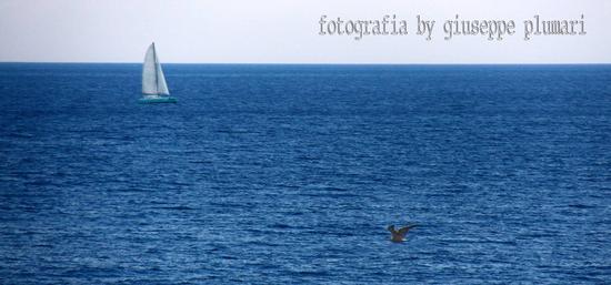 il gabbiano e il catamarano - Letojanni (771 clic)