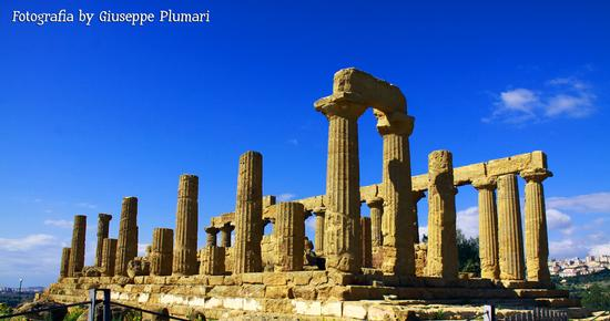 I Templi di Agrigento (528 clic)