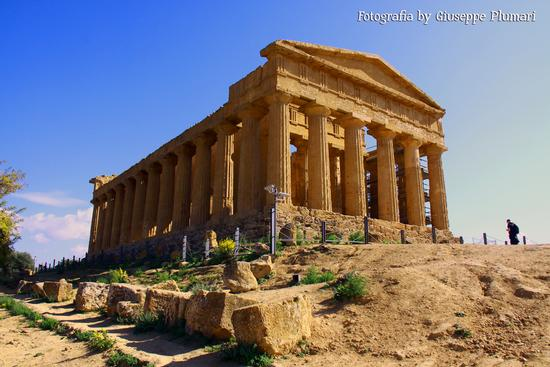 I Templi di Agrigento (550 clic)