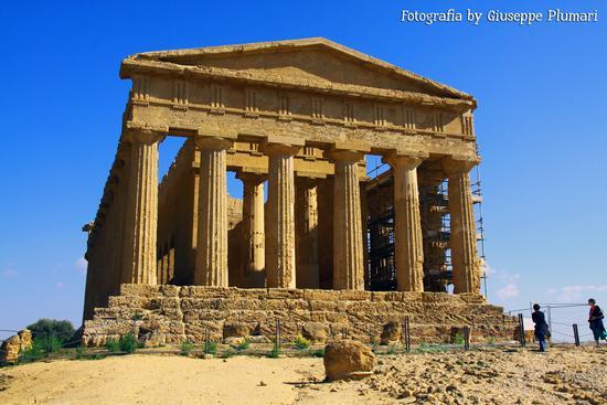 I Templi di Agrigento (465 clic)