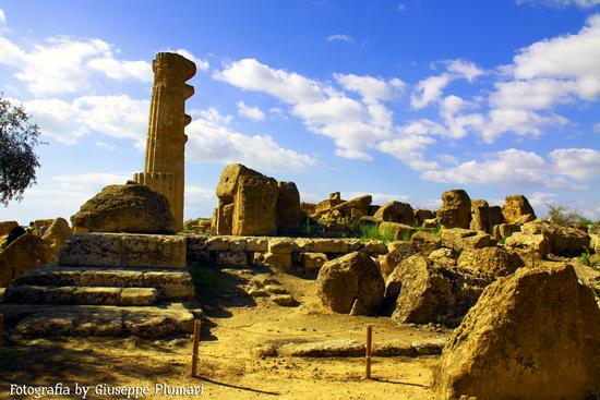 I Templi di Agrigento (481 clic)