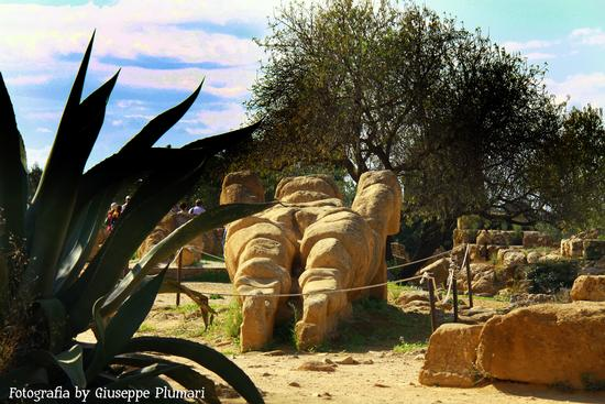 I Templi di Agrigento (595 clic)