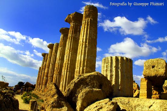 I Templi di Agrigento (478 clic)