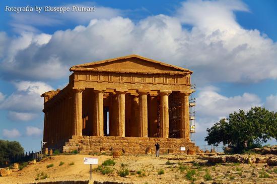 I Templi di Agrigento (650 clic)