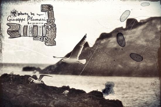 - Aci trezza (1870 clic)