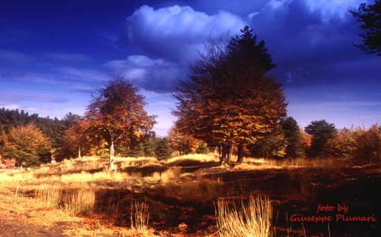 paesaggio autunnale - Etna (5471 clic)