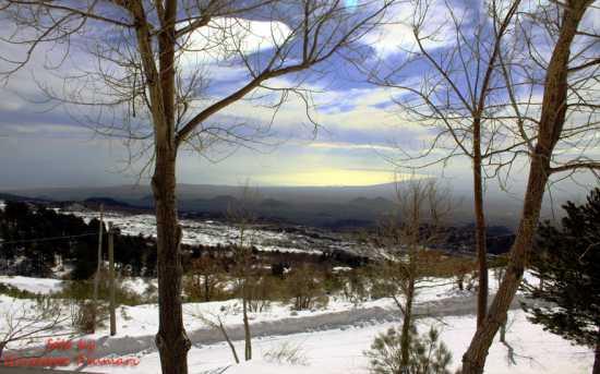 paesaggio invernale - Etna (2734 clic)